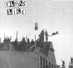Fleas & Lice / Bleeding Rectum split LP