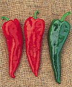 "Piment fort ""Crimson Hot"""