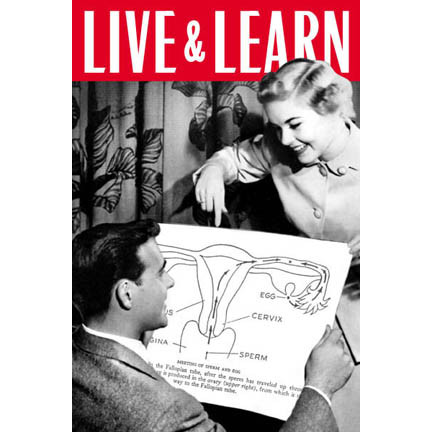 Live and learn (Stella Marrs)